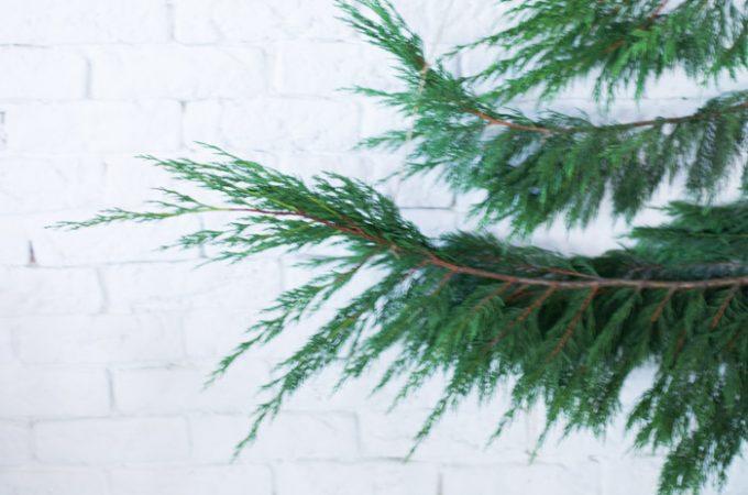 Árbol de Navidad con ramas verdes