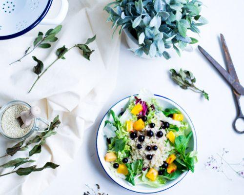 Ensalada de Quinoa con mango y arándanos