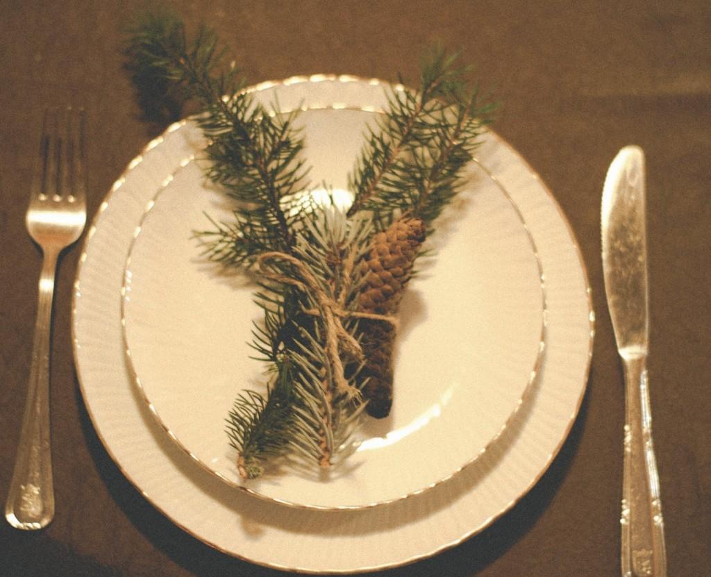 Como hacer un centro de mesa con plantas