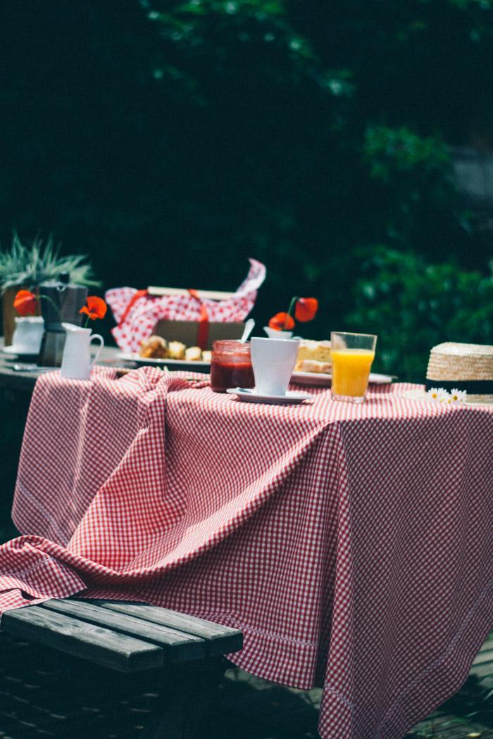 Desayuno en el campo